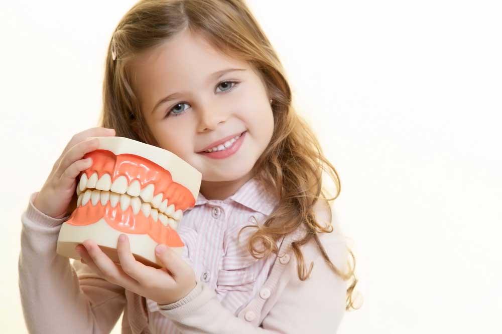 Kinderzahnheilkunde in der Zahnarztpraxis Siekmann in Celle